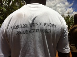 """Agroecological ways of promoting food and nutritional security"" - our pretty cool T-Shirt"