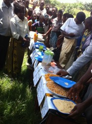 Farmers presenting samples of their invented recipes to be tasted using legumes, local maize and other crops promoted through MAFFA.